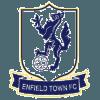 Enfield Town F.C. Logo