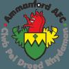 Ammanford A.F.C. Logo